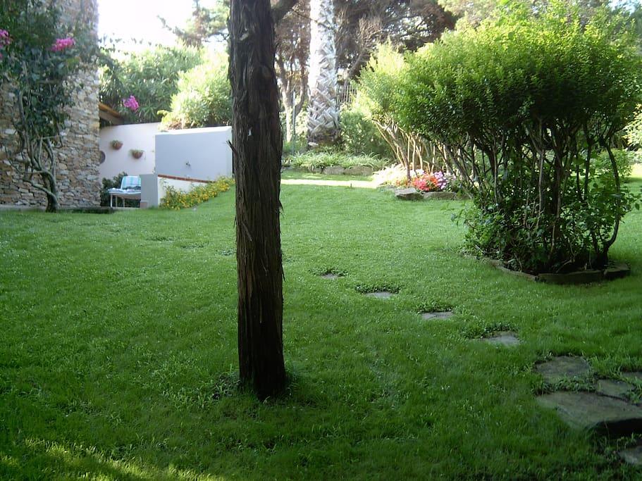 Giardino privato, completamente recintato
