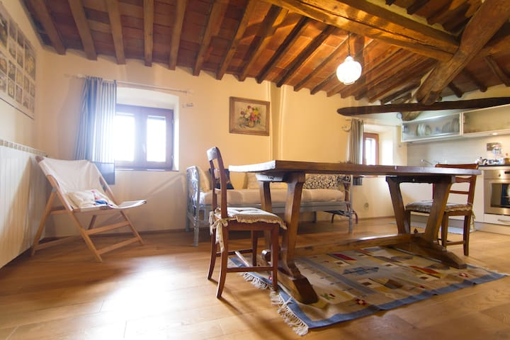 Apt. in authentic country house - Arezzo - Apartemen