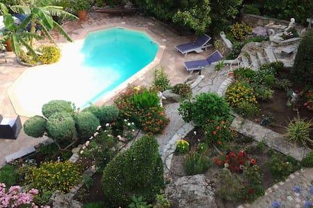 Agréables Vacances en Corse - Monticello - Appartement