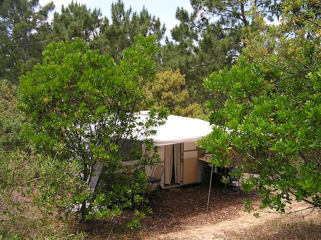 Caravan for 2 people - Aljezur - Camper