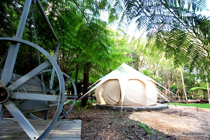 Glamping in a Fern Gully 2hrs from Melbourne