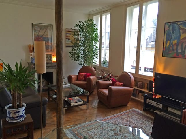 Centre (Marais) - Large one bedroom with elevator