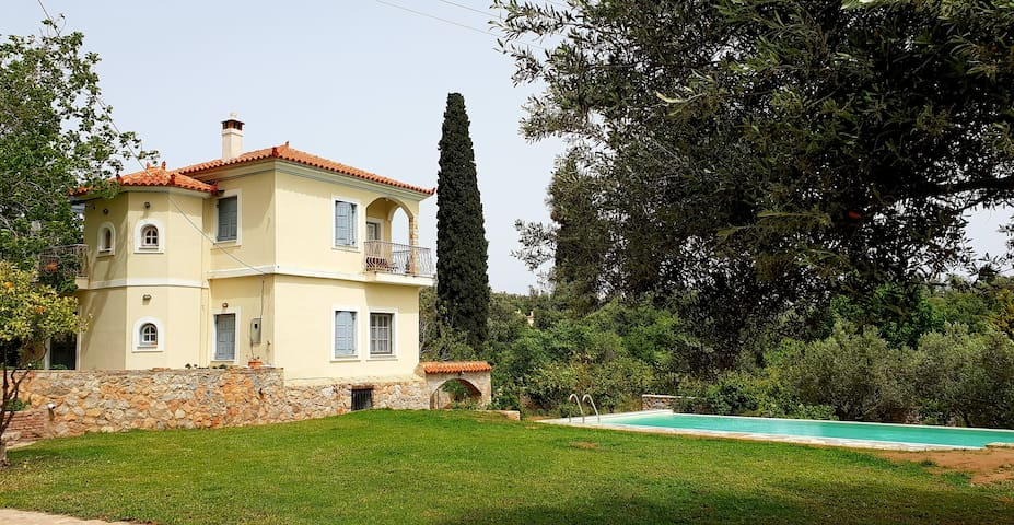 Vacations house with lemon trees