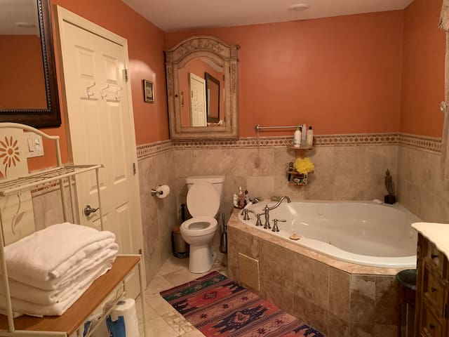 Luxury 2 Bedroom Private suit with Jacuzzi
