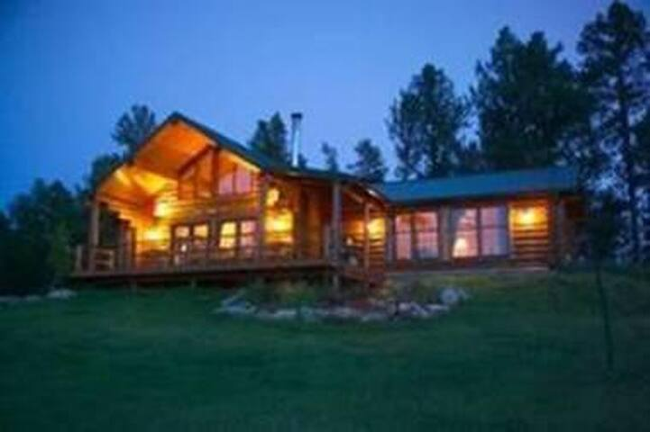 Log Home surrounded by forest - Custer - House