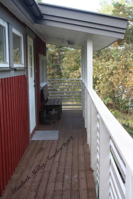 Entén till huste i Gustavsvik
