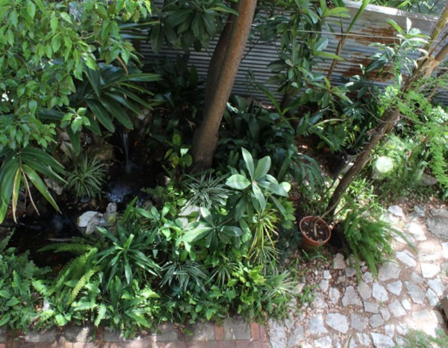 Courtyard w/ trees, plants, ponds,& waterfalls.