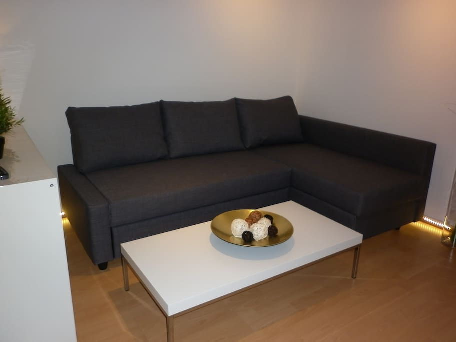 Living room, couch can be changed to a bed for two persons