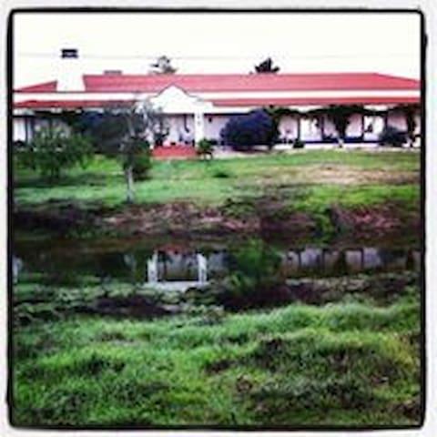Quinta da Palmeira - Coruche - House