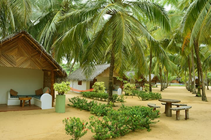 Roshanne Beach Resort - Alankuda