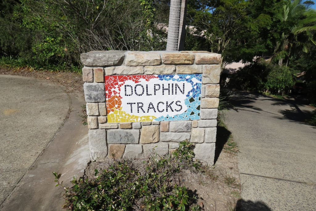 Welcome to Dolphin Tracks