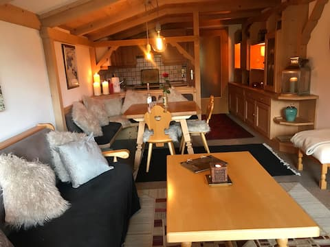 Entire Stylish, cosy, apartment 1km from Maria Alm