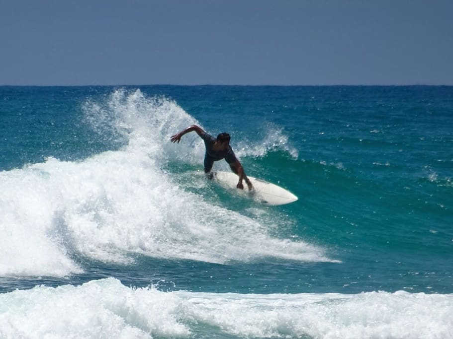 We are situated in one of the best surfing stretches in the world