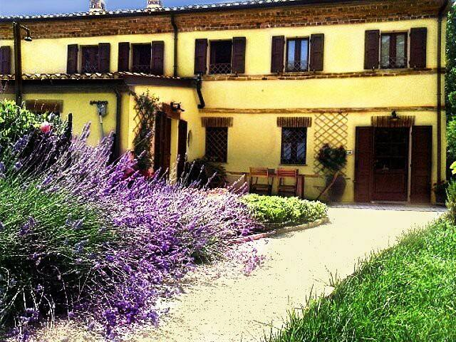 Corner Garden b&b - Green Room - Potenza Picena - Bed & Breakfast