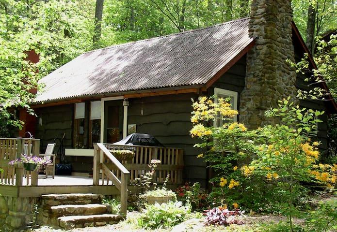 Cozy mountain cabin near asheville cabins for rent in for Rustic cabins near asheville nc