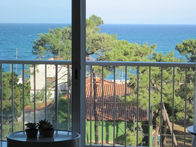 Vistalmar, sea, pool, park., wifi, air conditioner - Malgrat de Mar - Appartement