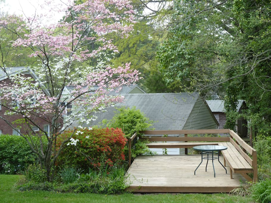 Backyard deck during spring bloom