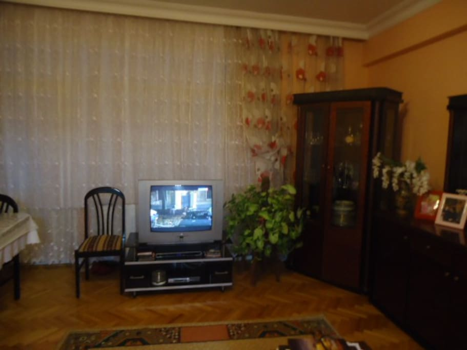 Living room is a nice place to watch TV program at any language with satellite antenna.