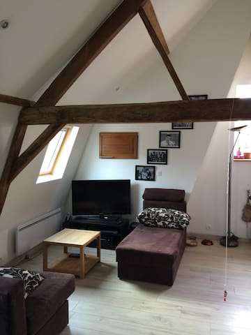 Cosy appartment with 1 bedroom - Lille - Wohnung