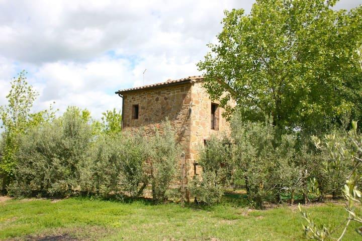 La Torretta, sleeps 2 guests in Torrita Di Siena - Torrita di Siena