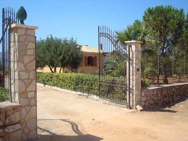 Villa sul mare - Castelluzzo - Lejlighed