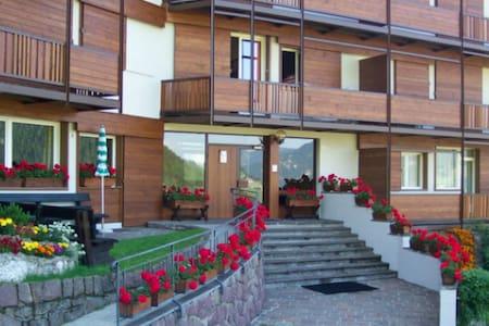 Miniappartamento attrezzato ideale per 2 persone - Selva di Val Gardena