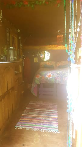 interior views, a comfortable bed with views of the forest