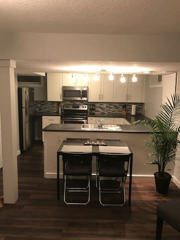 Beautiful 2 bdrm lower suite steps from the LRT - Edmonton - Appartement