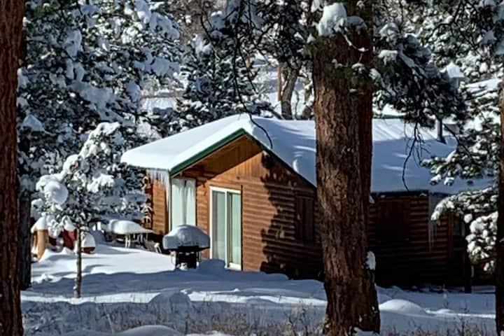 Winter Hideaway Cabin on the Cache la Poudre River