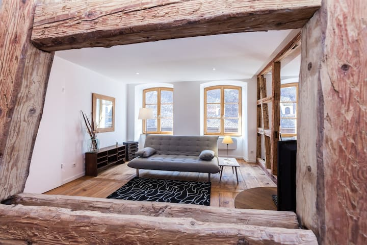 In an historic building a beautiful apartment - Obernai - Byt