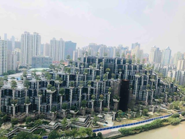 卧室看得到上海新地标
