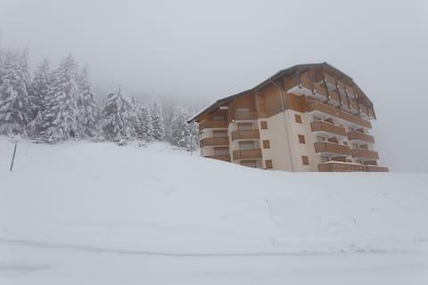 Spacious Penthouse - Portes du Soleil, French Alps