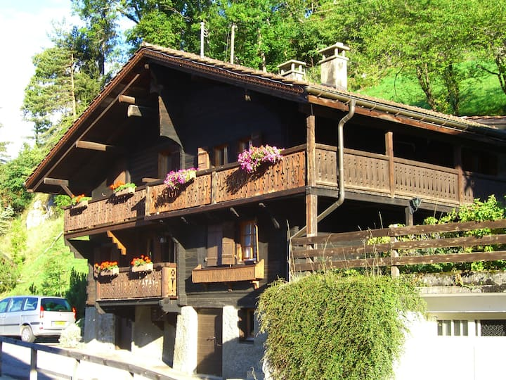 Appartement de Charme Gryon/Villars /longue durée