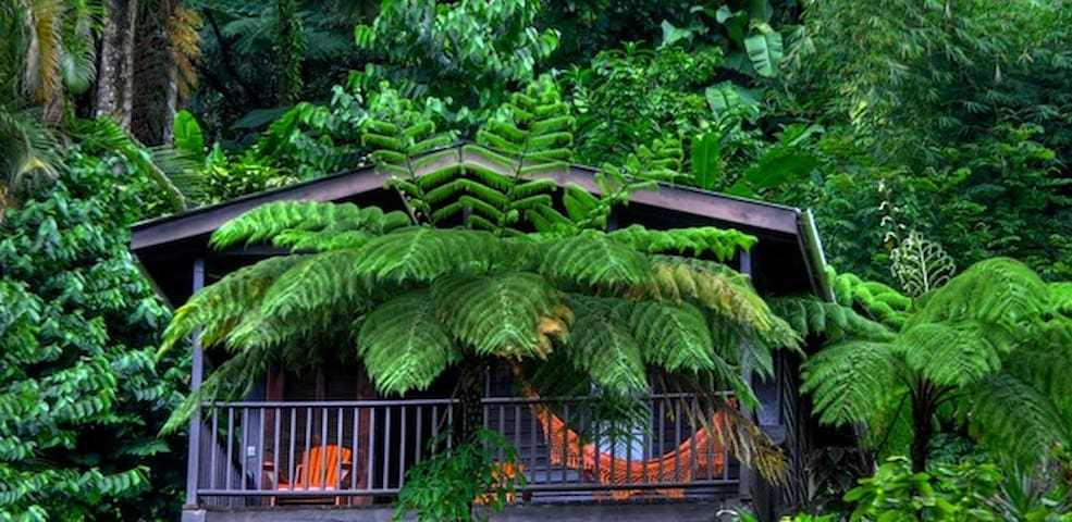 Rainforest Cabins with Sea View - St Paul Parish - Stuga