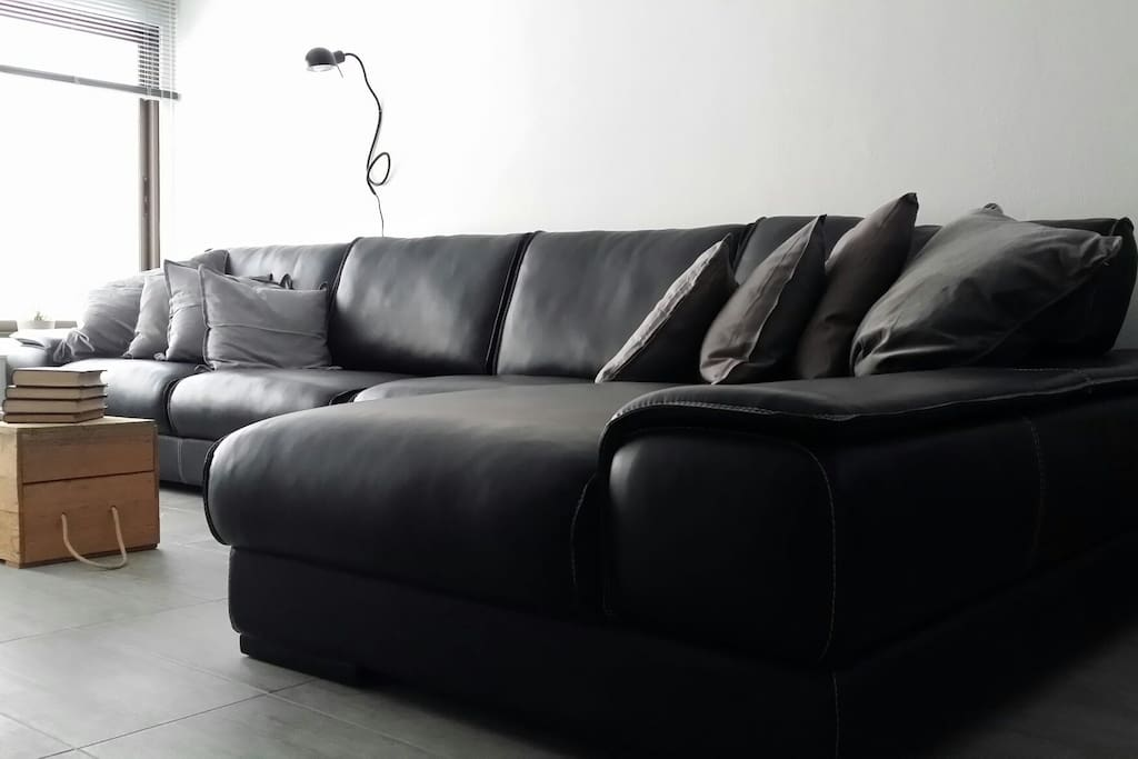 Bright cozy living room