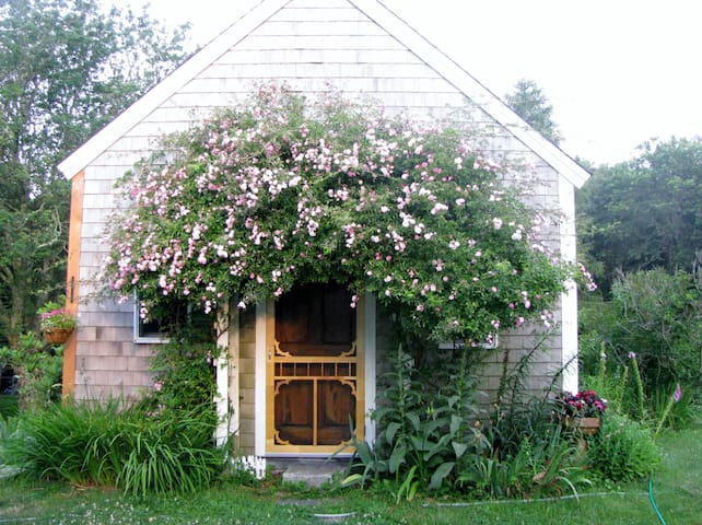 Rose Covered Cottage on Cape Cod - Eastham - Hus