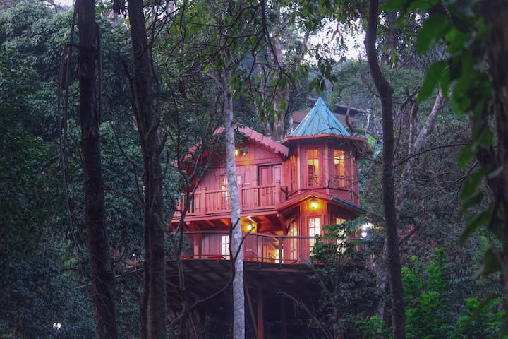Forestvalley Tree House Coorg - Studio