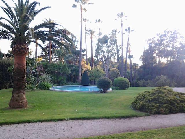 Appartement de charme sur joli parc - Cannes - Huis