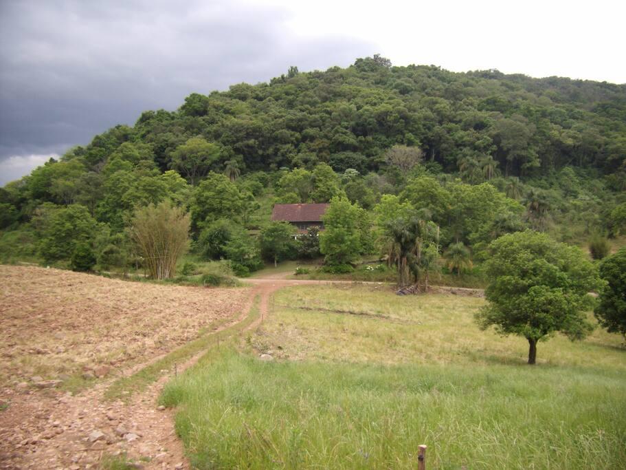 Visão da Casa de Campo cercada de verde por todos os lados.