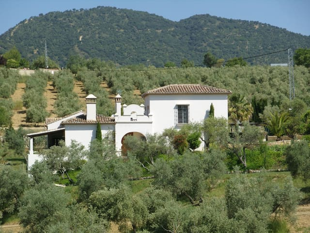 Holiday Villa near Ronda, Spain - Arriate - Villa
