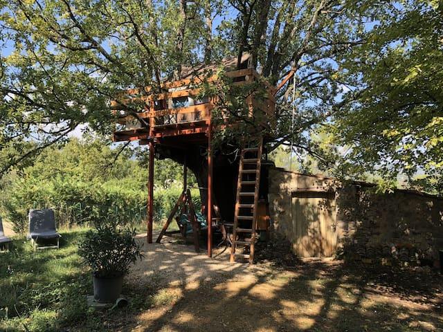 Cabane perchée dans un vieux chêne +petit déjeuner