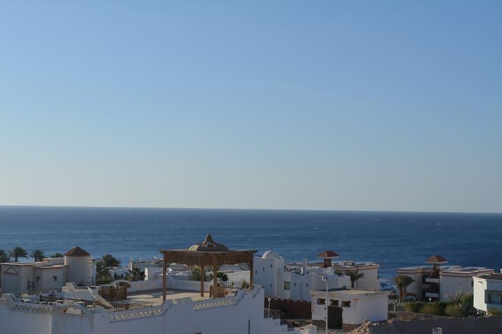 The Mo Place El Montaza
