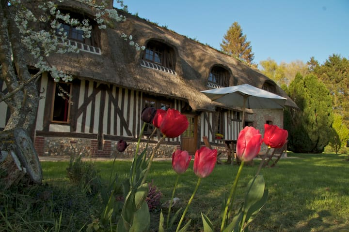 LA LANDE thatched-roof cottage - Moyaux - Гестхаус