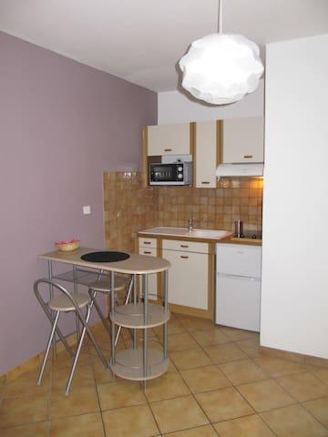 studio 20 m² proche INOVALLEE/CNPC - Domène - Leilighet