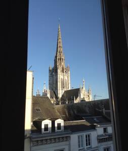 Chambre spacieuse centre de Rouen - Rouen - Bed & Breakfast