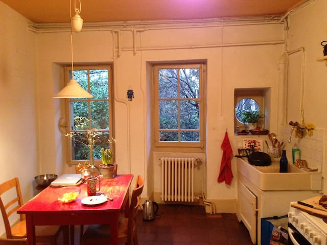 Charming big room in the old town - Lausanne - Apartment