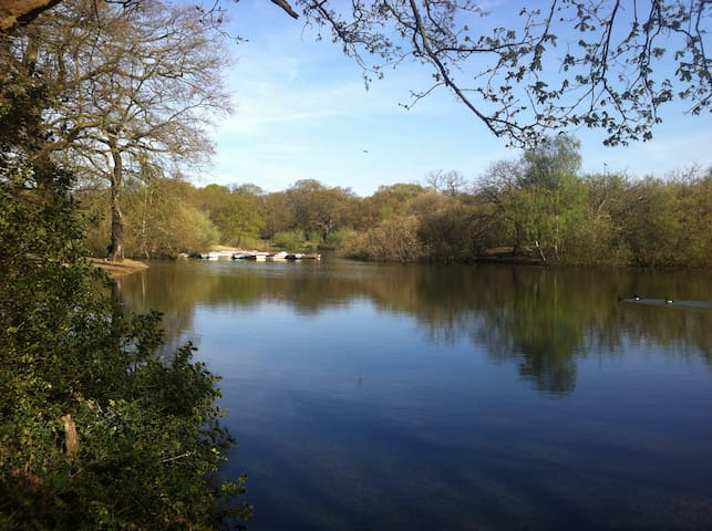 Local Boating Lake - 8 mins walk from house