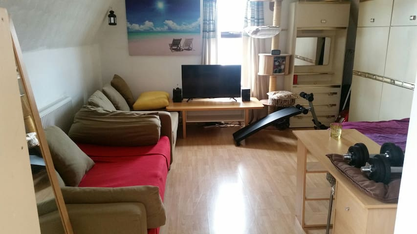 Shared studio double bed or sofa. - Manchester
