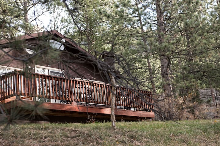 Peaceful, cozy, cabin in the woods - Glen Haven - Cabana