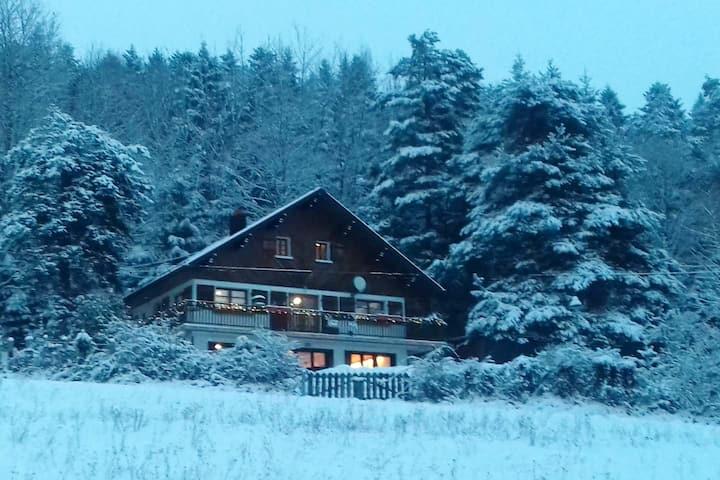 Spacious house with mountain view